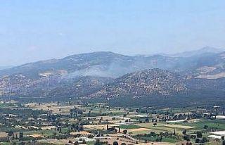 Havran'daki orman yangını kontrol altına alındı