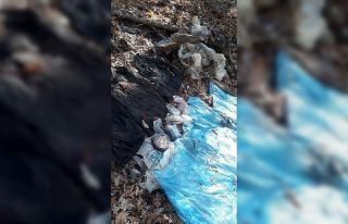 Osmaniye'de 5 kilo TNT bulundu
