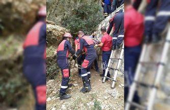 Kayalıklardan düşen şahsı itfaiye ekipleri kurtardı
